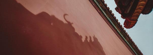 小米MIX2S | 九個角度讓你的故宮旅游照更搶眼!